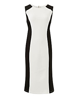 Sleeveless Illusion Bodycon Dress