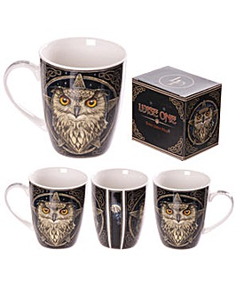Fantasy Wise Owl Bone China Mug