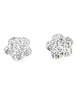 Crystal Glitz 9 Carat Gold Earrings