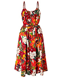 Monsoon Alaska Print  Sun Dress