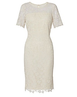 Gina Bacconi Sapphire Embroidered Dress