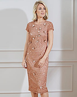 Nightingales Embellished Dress