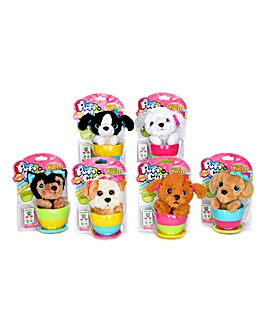Pups in Surprise Cups Assortment