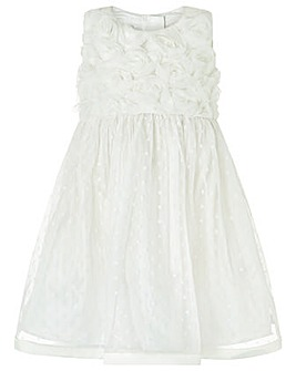 Monsoon Baby Blossom Rose Dress