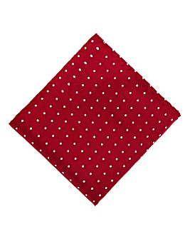Kensington Burgundy Silk Square