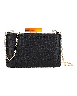 Box Clutch With Tortoiseshell Clasp