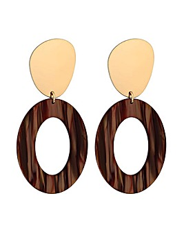 Mood Brown Stud With  Resin Earrings
