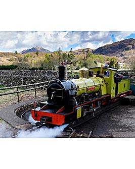 Steam Train Trip & Cream Tea