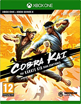 Cobra Kai The Karate Saga Continues Xbox