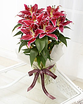 Sceneted Oriental Lily