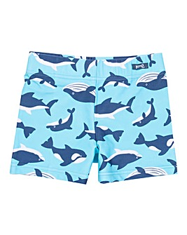 Kite Flippers & Fins Trunks