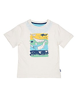Kite Ocean Zones T-Shirt