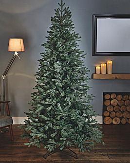 Woodland Blue Green Fir Tree