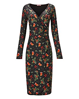 Joe Browns Rocking Robin Jersey Dress