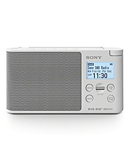 Sony XDR-S41D Wireless Radio
