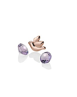 Anais Dove Charm And Amethyst Set