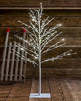 Willow Jewel Tree 1.2m