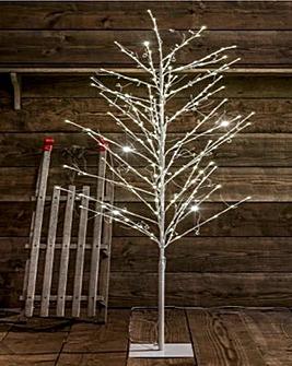 Willow Jewel Tree 1.8m