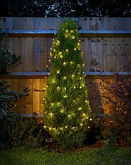 Smart Garden 50 LED Solar String Lights