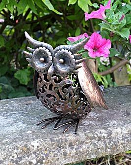 Silhouette Solar Owl