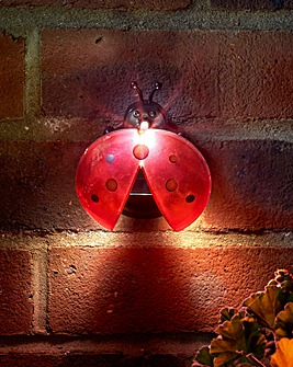 Ladybug Solar Light pack of 4