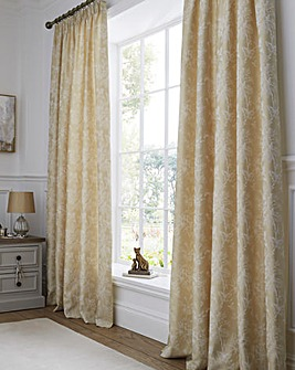 Jasmine Champagne Lined Curtains
