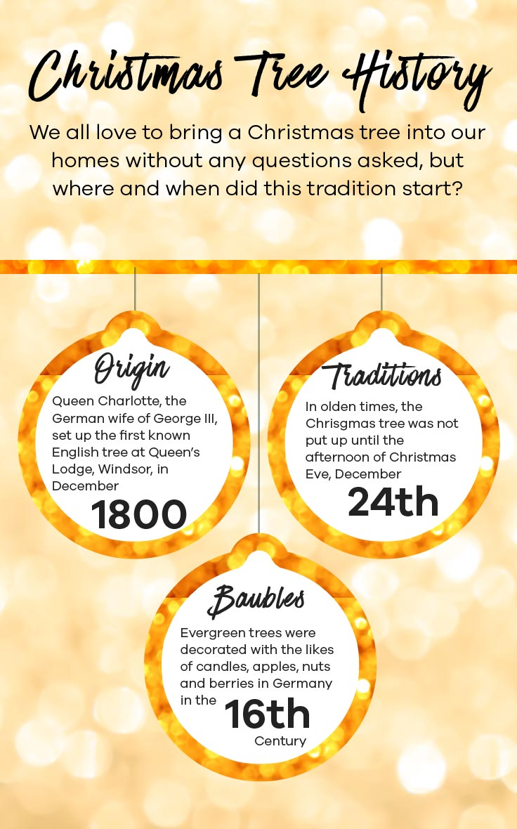 Christmas History In English.Take Our Quiz Find Your Christmas Tree Colour Scheme J D