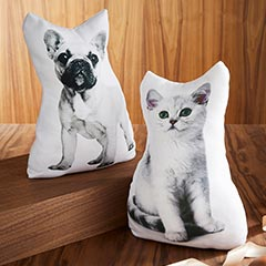 Dog and cat cushions
