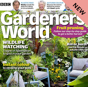 Books & Magazine Subscriptions