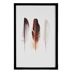 Feather Trio Framed Print