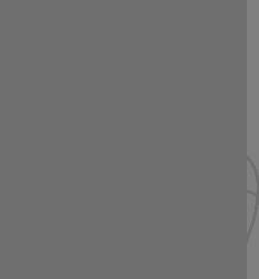 Multiway Bikinis