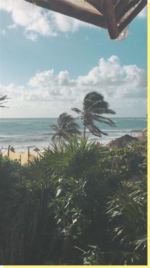 Windy Beach